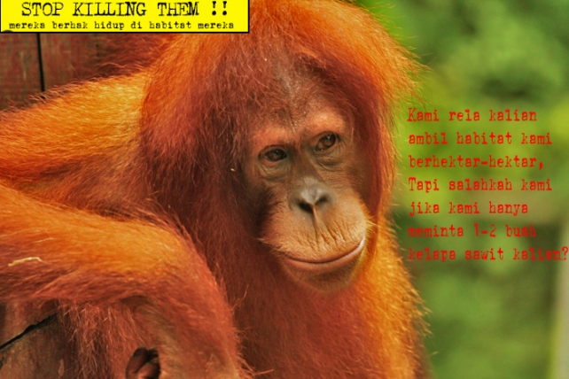 STOP KILLING THEM!!